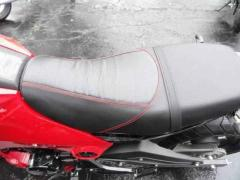 2017 Other Grom 125 Ice Bear Fuerza